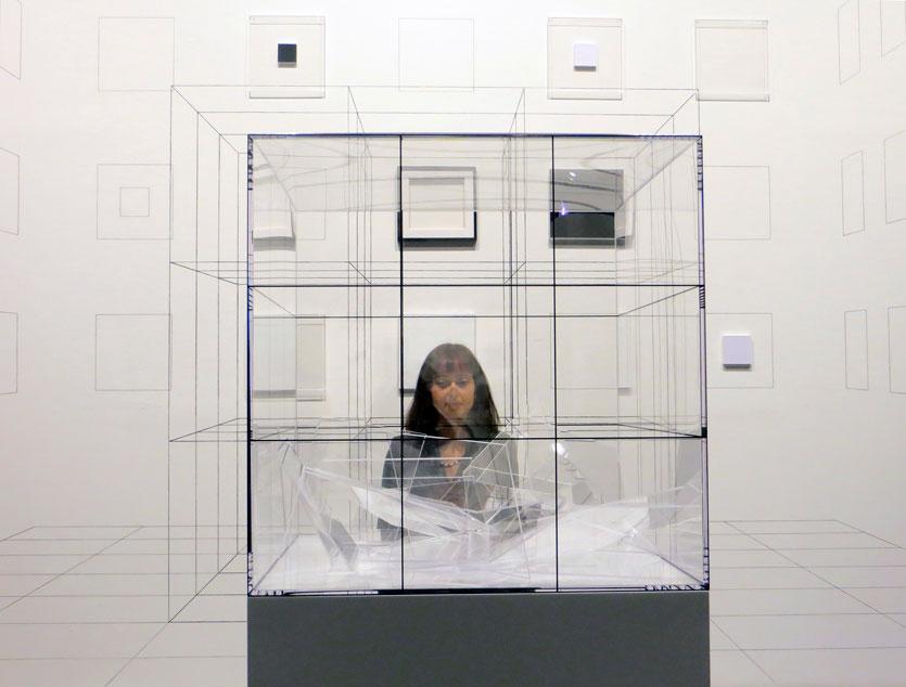 Biennale dell'immagine 2013
