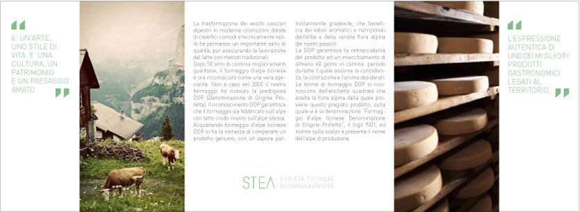 STEA, formaggio, supsi, dacd, cv, comunicazione visiva, forma, cheese, grafica, corporale identitiy, brochure, società ticinese economia alpestre
